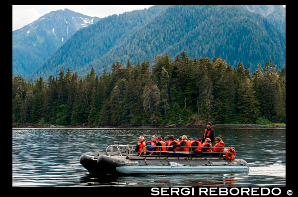Safari Endeavour cruise passengers in an inflatable boat in Icy Strait. Glacier Bay National Park adn Preserve. Chichagof Island. Juneau. Southeast Alaska. Today is the ultimate day of exploration. Set your course for arguably the richest whale waters in Southeast Alaska. Keep watch for the telltale blow of the humpbacks as you scour the nutrient-rich waters in search of whales, porpoise, sea lions, and other wildlife. Join the Captain on the bridge or go on deck with your Expedition Leader. Late afternoon, drop the skiffs and kayaks for closer inspection of the remote coastline with eyes set on shore for possible bear sightings. This evening, take in the solitude while relaxing in the upper deck hot tub or enjoy a nightcap with your fellow yachtmates in the saloon.