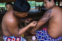 Native embera doing a tattoo in the Village of the Indian Embera Tribe, Embera Village, Panama. Panama Embera people Indian Village Indigenous Indio indios natives Native americans locals local Parque National Chagres. Embera Drua. Embera Drua is located on the Upper Chagres River. A dam built on the river in 1924 produced Lake Alajuela, the main water supply to the Panama Canal. The village is four miles upriver from the lake, and encircled by a 129.000 hectare National Park of primary tropical rainforest.