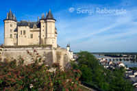 Views of the Castle of Saumur and the Loire River from the lookout. Winding up the steep streets of the domains we reach the castle, where you get one of the best views of this area of ??the Loire Valley.
