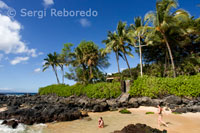 Playa de Secret Cove. Maui.